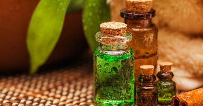 Argan Oil Can Be Used As A Treatment For Many Kinds Of Diseases