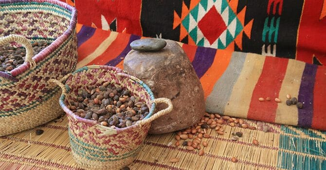 Argan Oil Comes From The Argan Tree, Native From Morocco