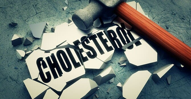 Bad Cholesterol Introduces Us To A Multitude Of Diseases