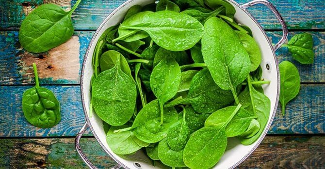 Green Leafy Vegetables Are One Of The Foods That Will Let You Stay Slim