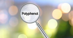 Polyphenol Is Essential For A Healthy Life