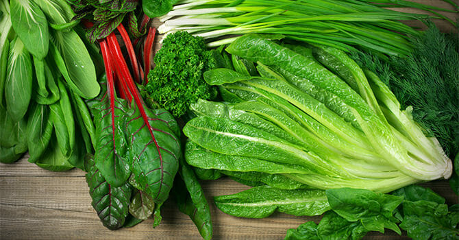 Green Leafy Vegetables Are Important In A Diet