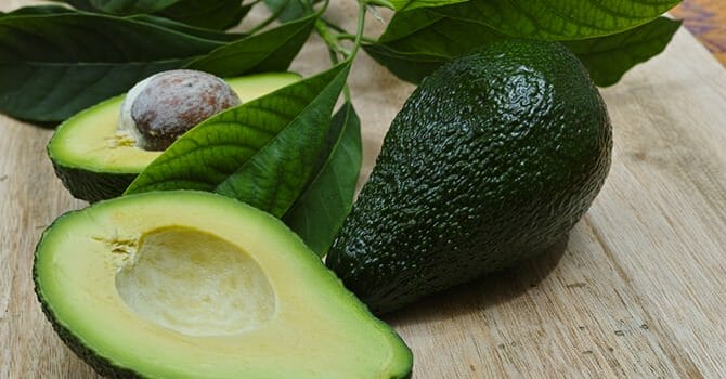 Avocado Is One Of The Healthiest Gift From Nature