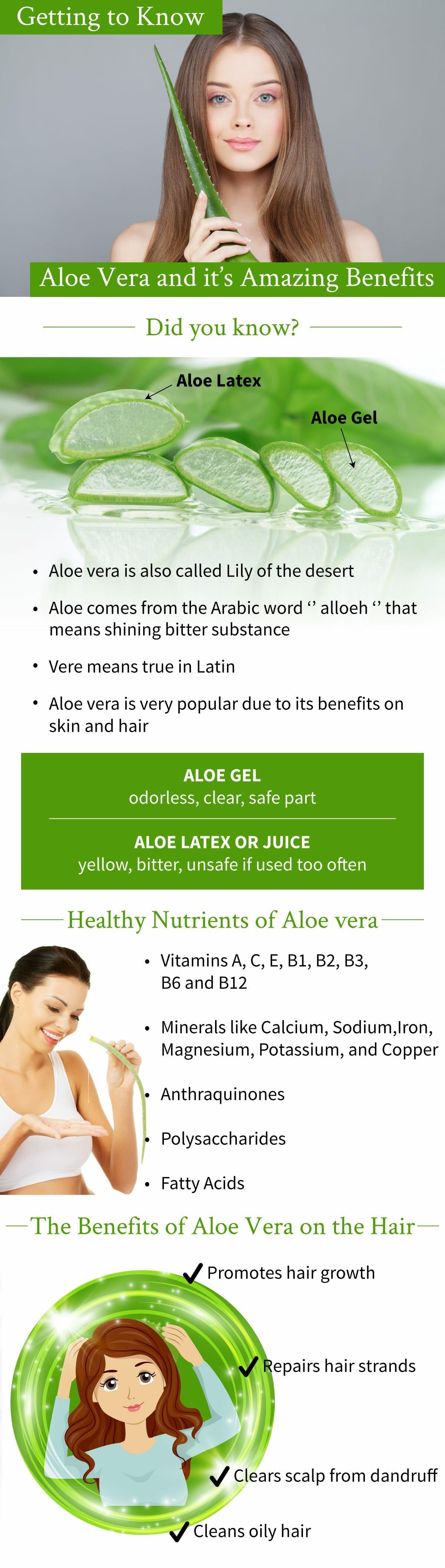 aloe vera's amazing benefits