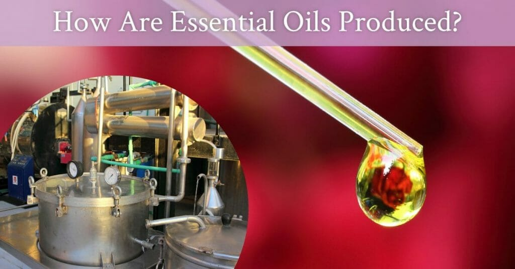 how to produce oils